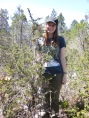 this pygmy cypress is about as tall as I am