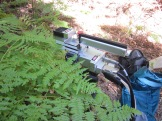 the LiCor 6400 takes accurate measurements of photosynthetic rates and transpiration rates